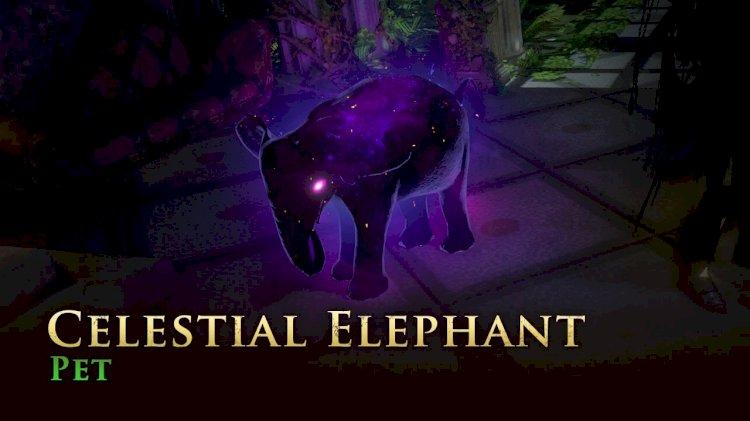 Bébi elefántot valaki?